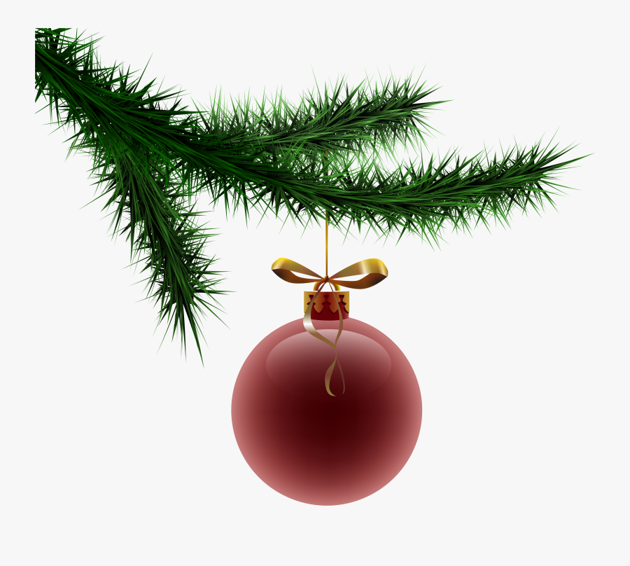 Branch Clipart Christmas - Christmas Tree Branch With Ornament Png, Transparent Clipart