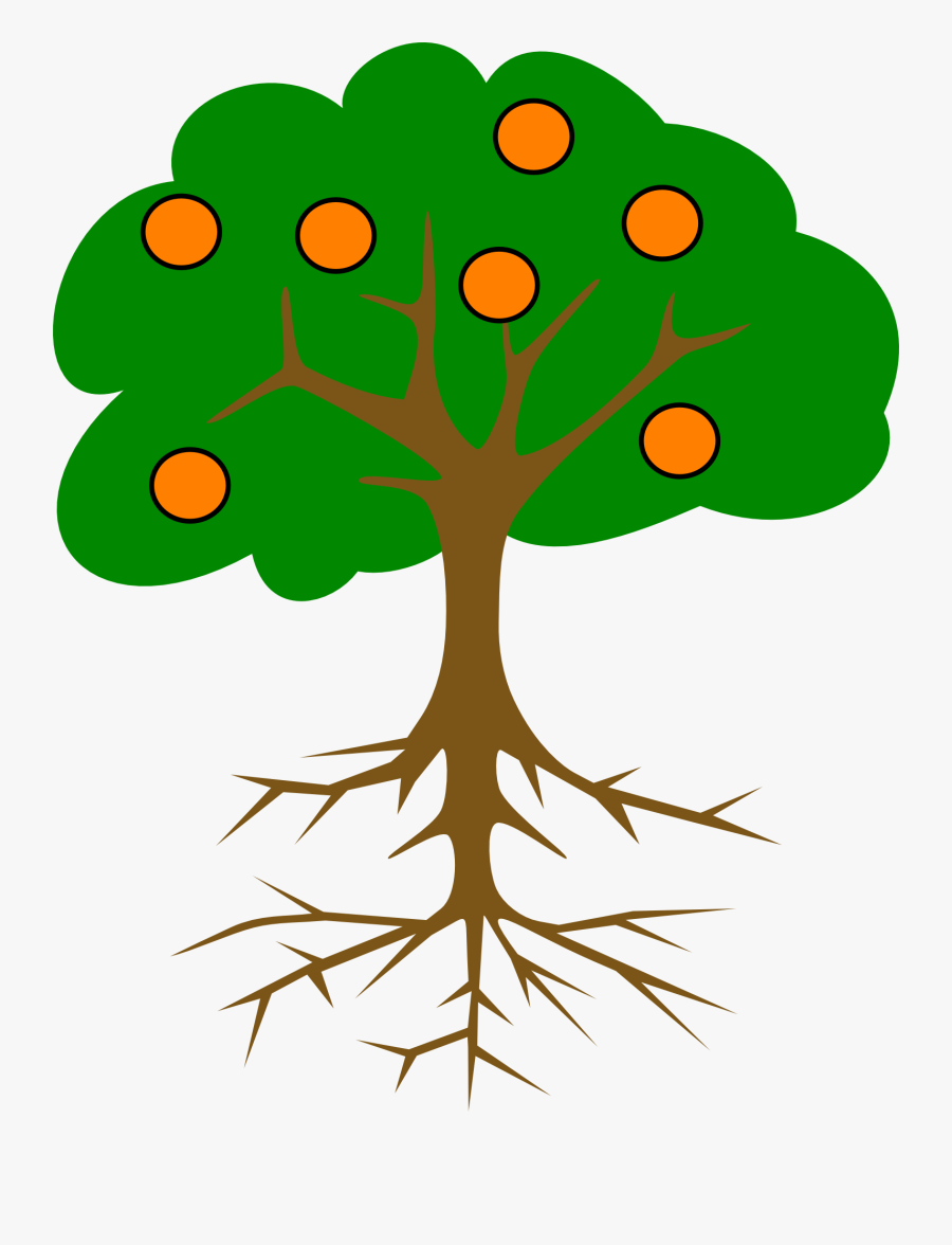 Green Tree With Roots, Transparent Clipart