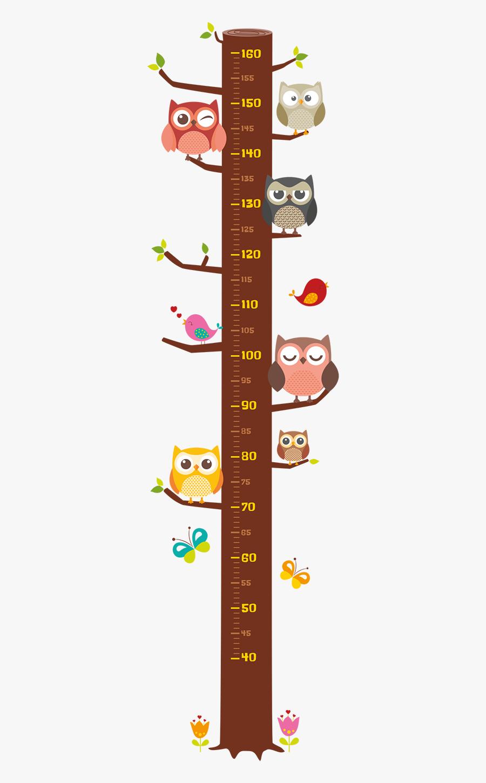 Height Chart Owl, Transparent Clipart
