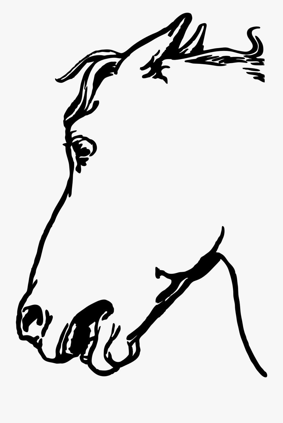 Horsehead Gambar Sketsa Kepala Kuda Free Transparent