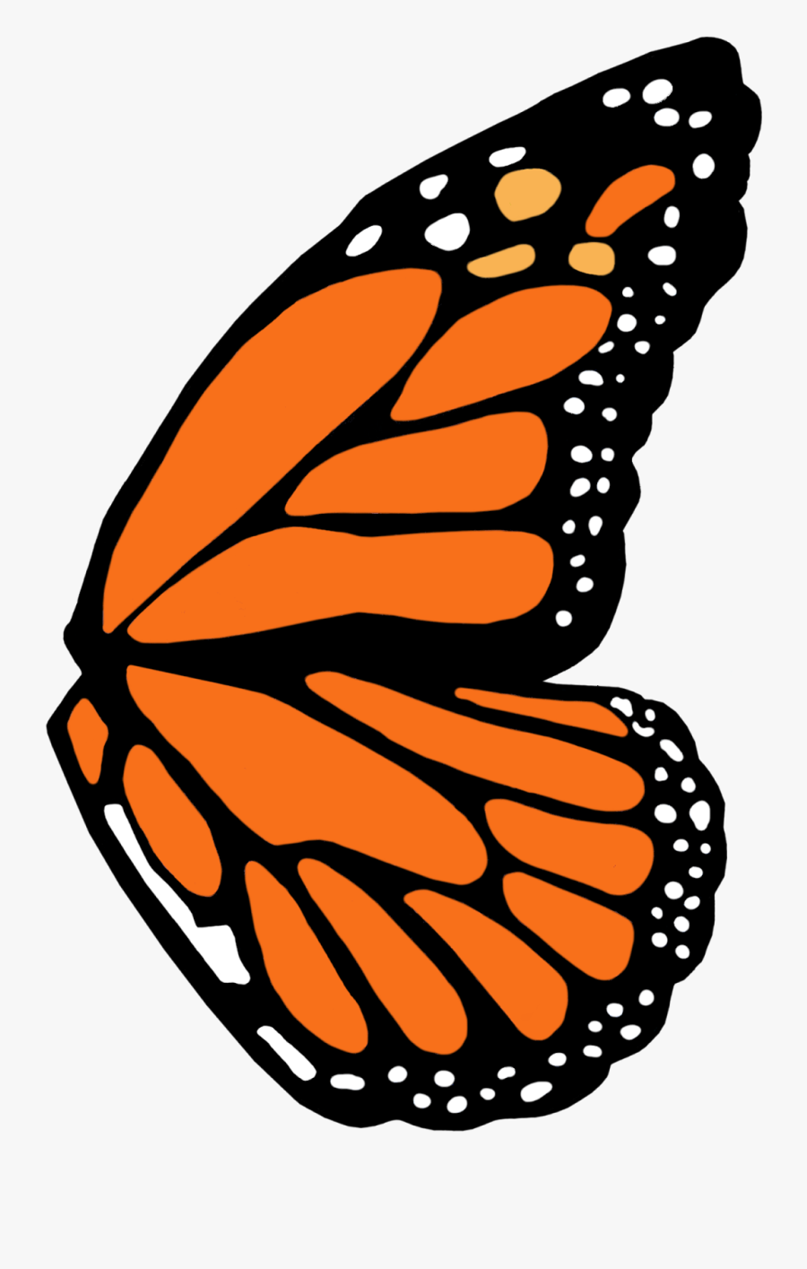 Transparent Tinkerbell Wings Png - Monarch Butterfly Wing Template, Transparent Clipart