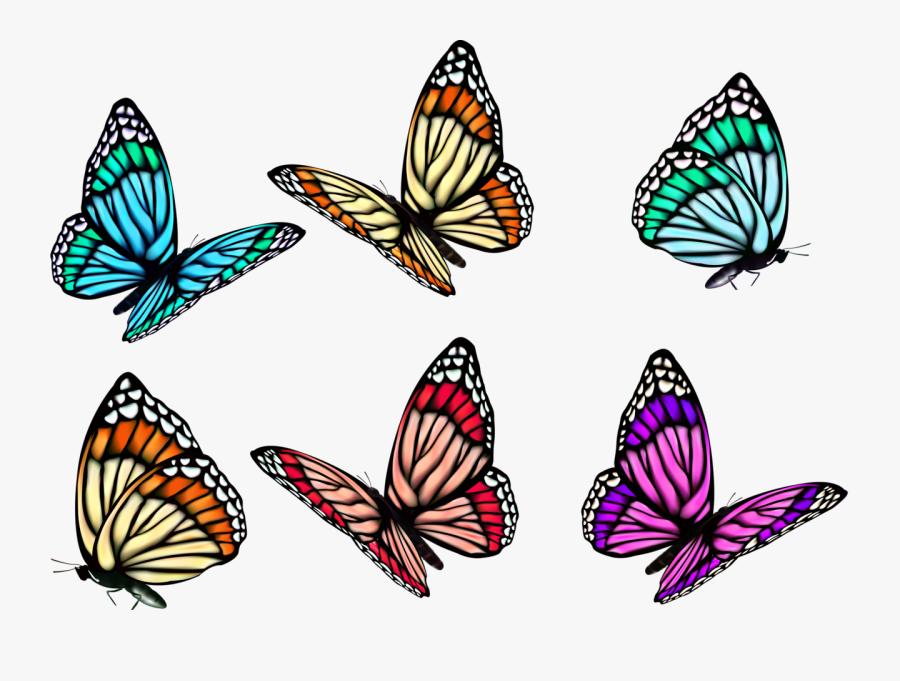 3d Butterfly Tattoo Vector, Transparent Clipart