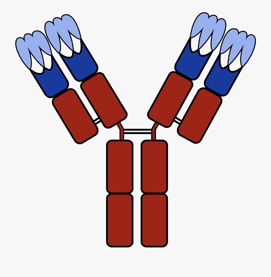Antibody Cartoon Png, Transparent Clipart