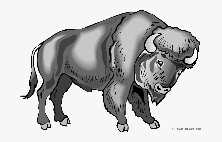 Water Buffalo Clip Art Portable Network Graphics Image - Animal Templates Buffalo Printables, Transparent Clipart