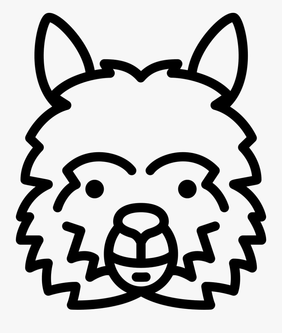 Lama Head - Fondos De Pantalla Mr Wonderful Para El Ordenador Hd, Transparent Clipart