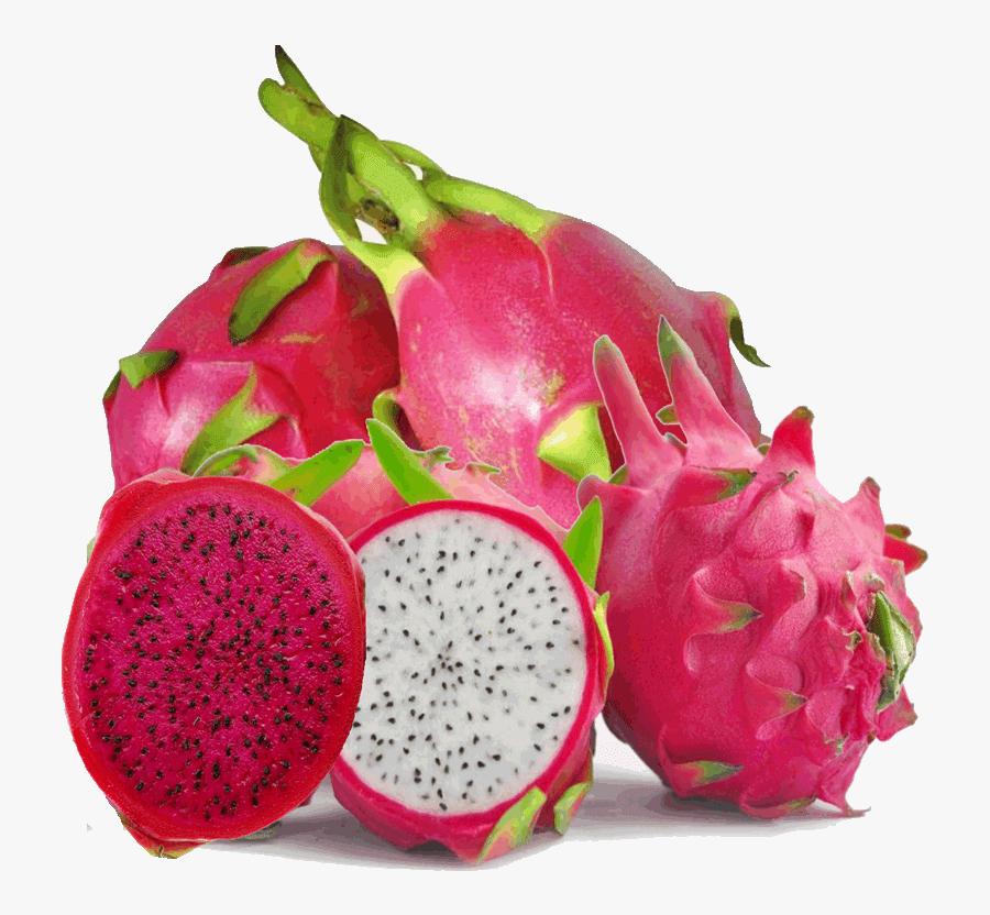 Transparent Dragon Fruit Clipart - Dragon Fruit Images Hd, Transparent Clipart