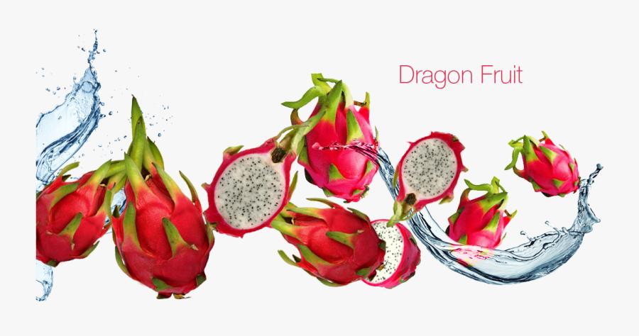 Transparent Dragon Fruit Png - Dragon Fruit Price In 1950, Transparent Clipart