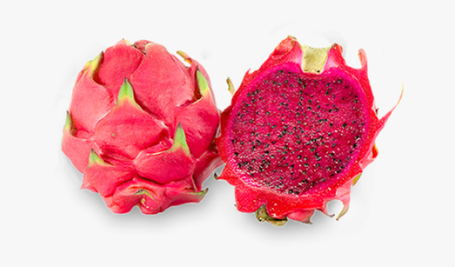 Tko A Mix Of Dragon Fruit With Creamy Vanilla That - Red Dragon Fruit Png, Transparent Clipart