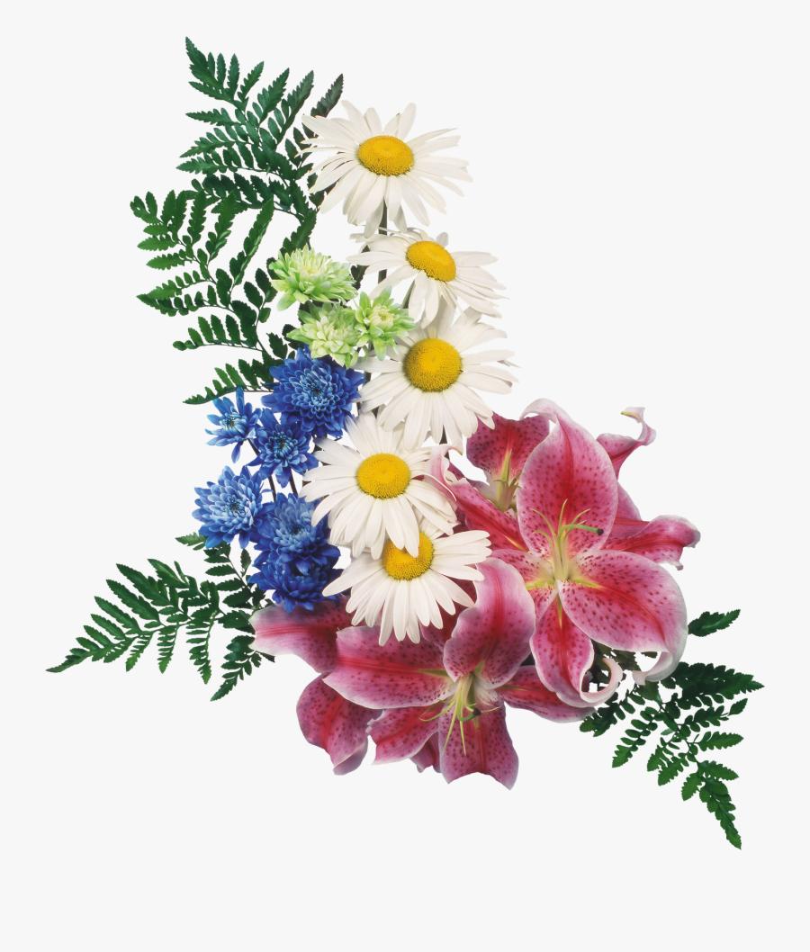 Картинки Цветы С Прозрачным Фоном, Transparent Clipart