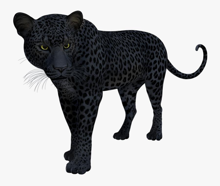 Black Panther Leopard - Black Panther Snow Leopard Jaguar, Transparent Clipart