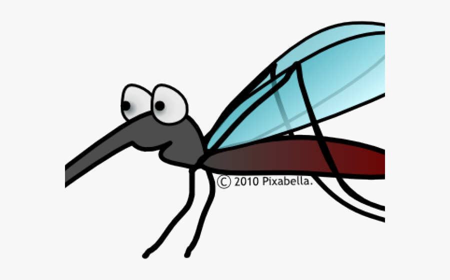 Insect Clipart Scientist - Mosquito Clip Art, Transparent Clipart