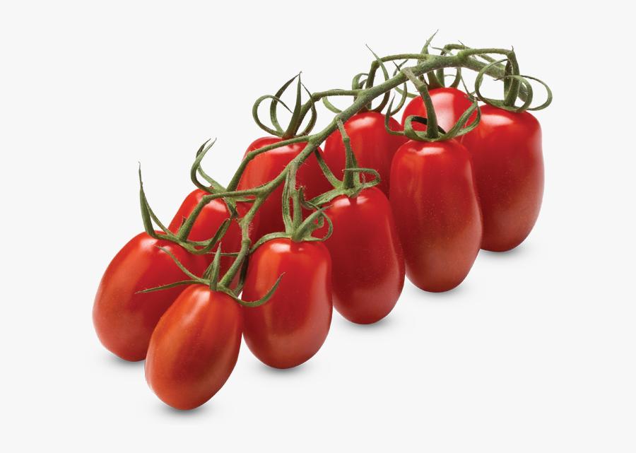Transparent Tomato Png - Tomate Mini San Marzano, Transparent Clipart