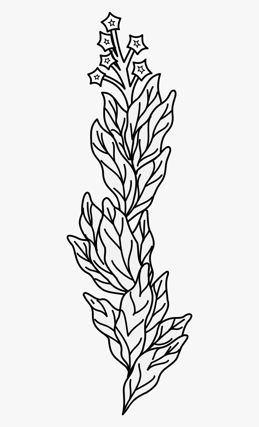 Line Art, Transparent Clipart