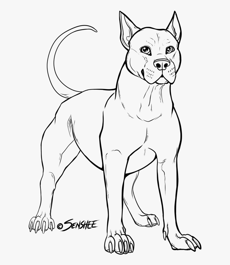 American Bully Clipart All About Drawings Pitbulls