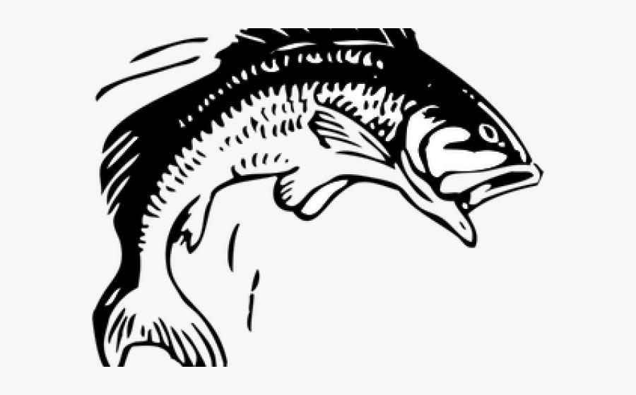 Transparent Fishing Rod Clipart - Fish Jumping Out Of Water Clipart, Transparent Clipart