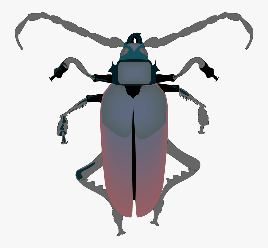 Vector Insects Pest Control - Vector Insect Hd, Transparent Clipart
