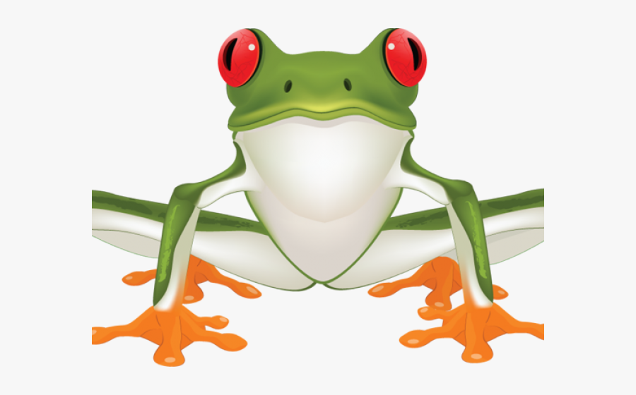 Red Eyed Tree Frog Clipart Tattoo - Green Tree Frog Clipart, Transparent Clipart
