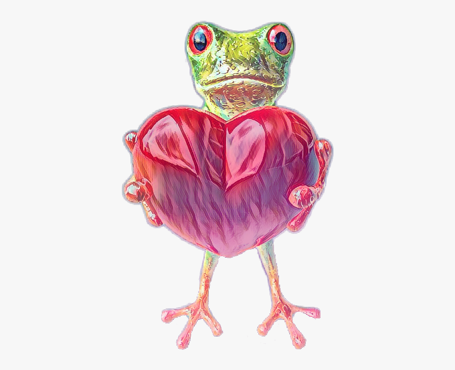 Amphibian Drawing Tree Frog - Frog, Transparent Clipart