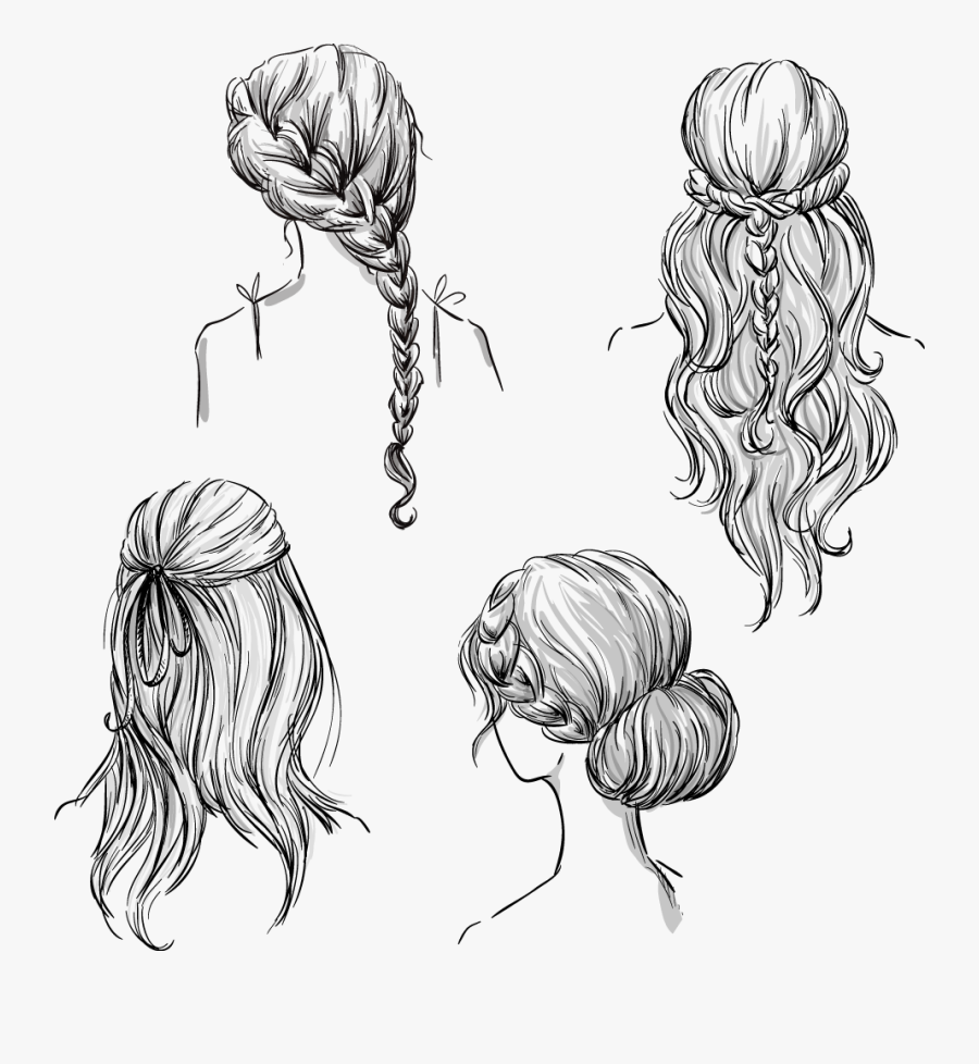 Clip Art Drawing Braided Hair - Hair From The Back Drawing, Transparent Clipart