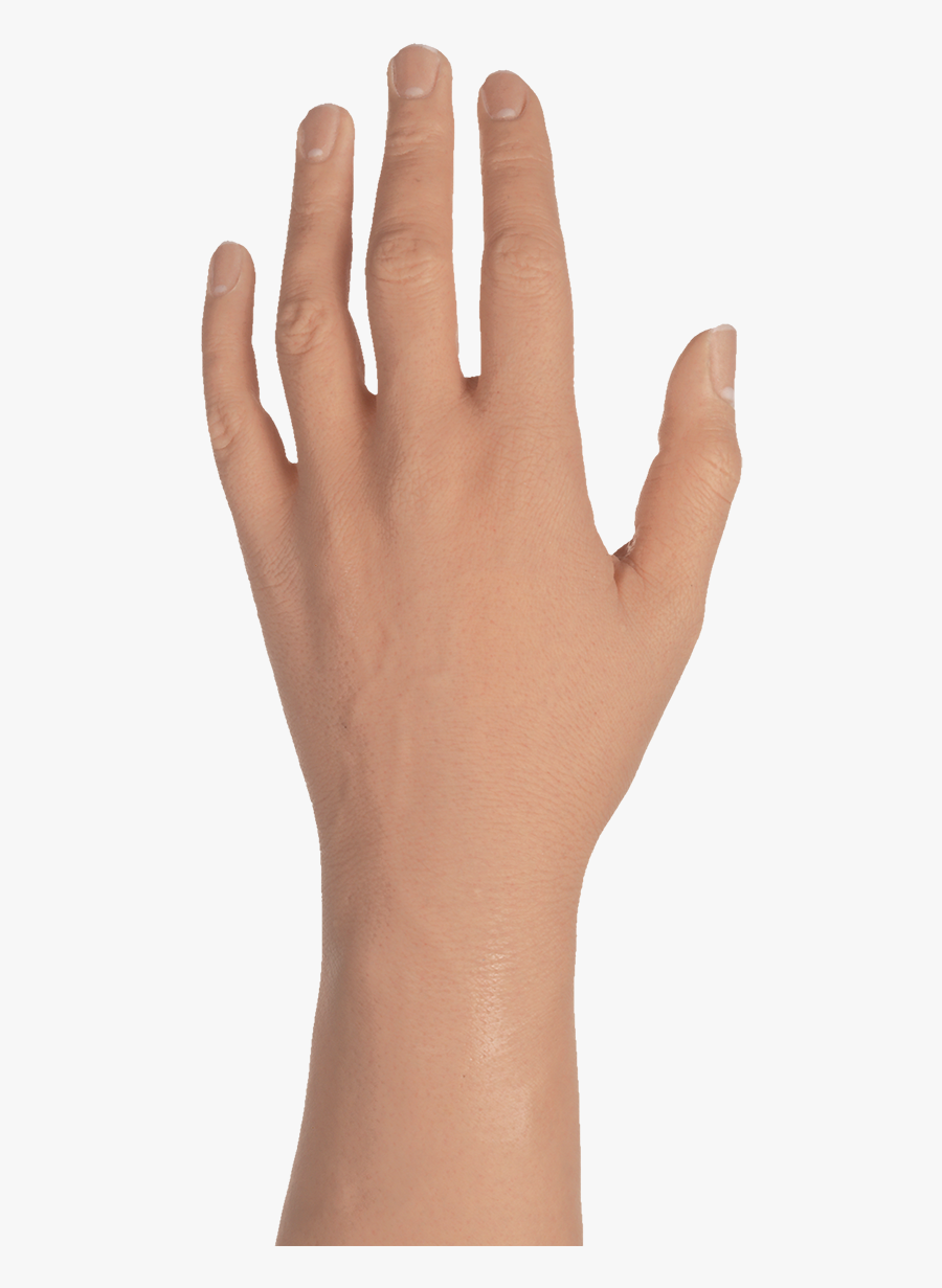 Hand Png Female – More than 12 million free png images available for download.