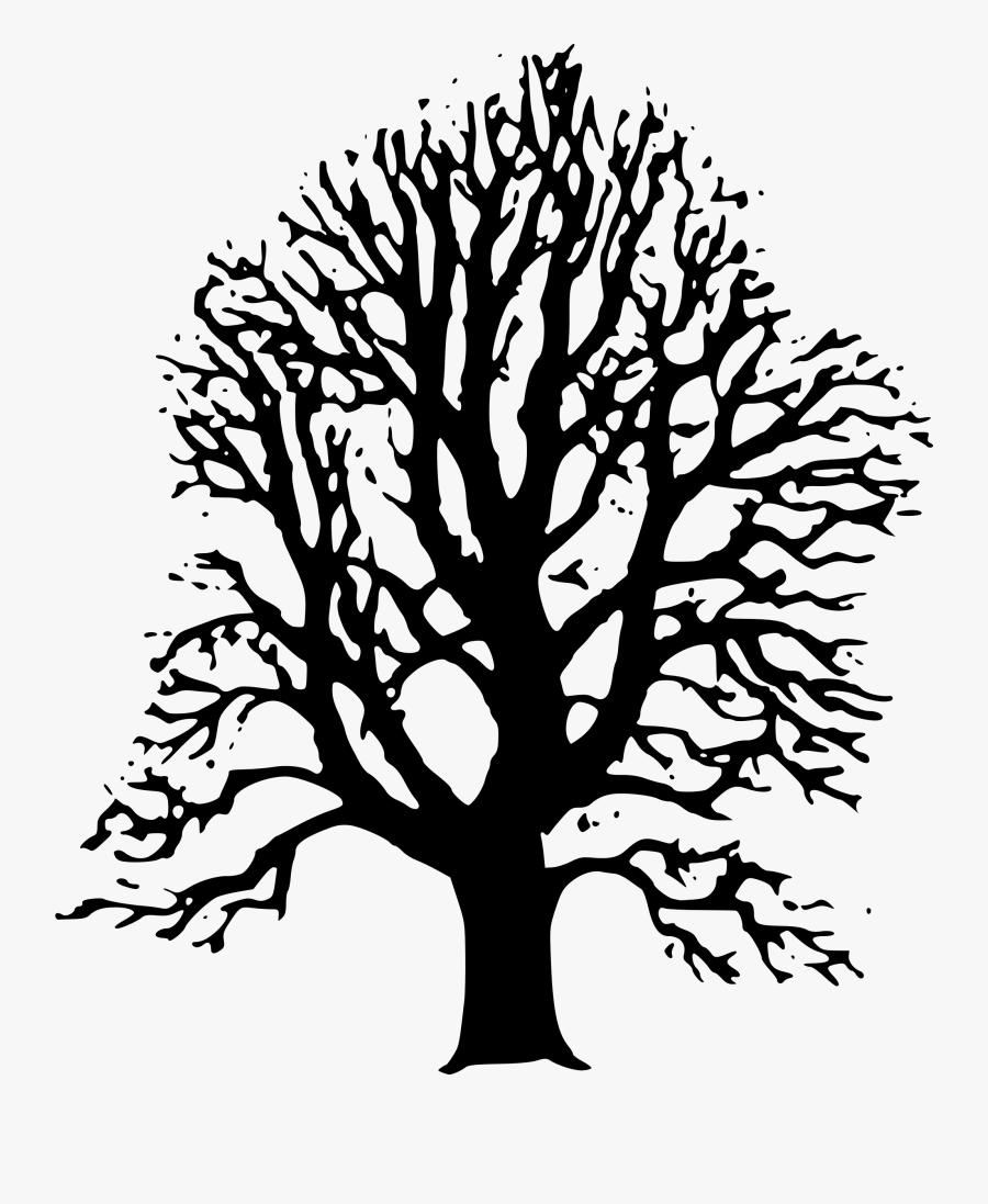 Lime Tree - Ilustrasi Gambar Pohon, Transparent Clipart