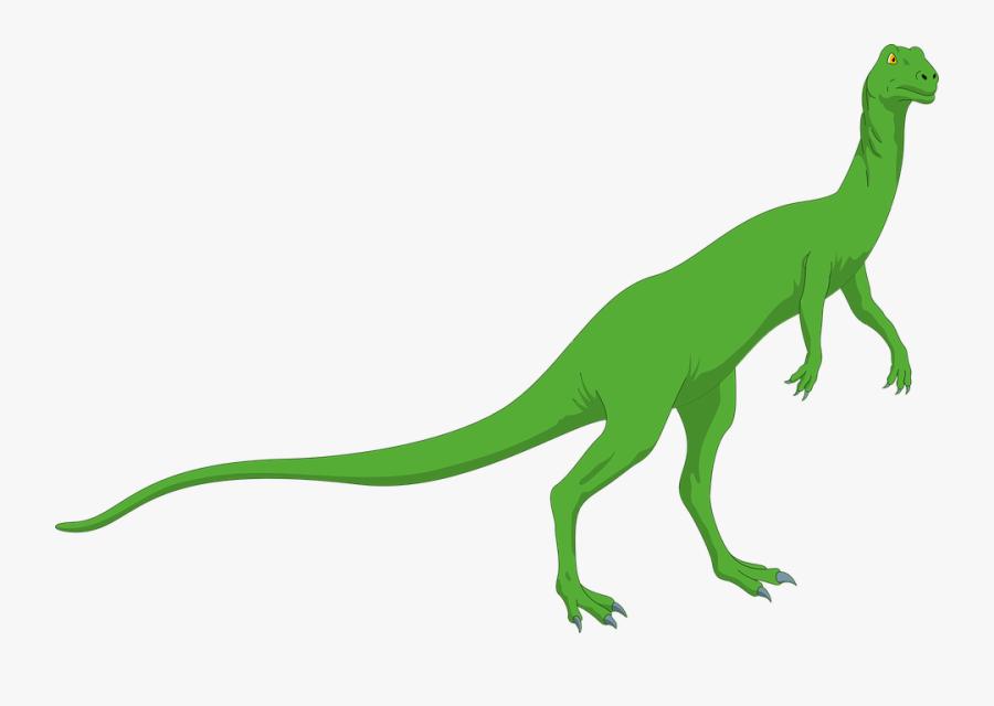 Dinosaur, Reptile, Prehistoric, Lizard, Dino, Jurassic - Standing Dinosaur With Long Neck, Transparent Clipart