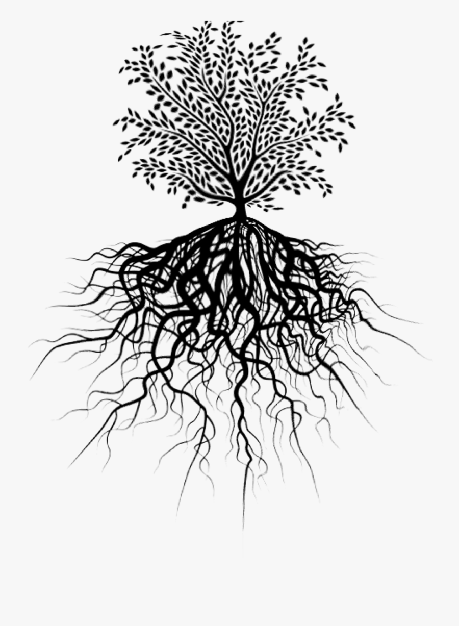 Transparent Tree Of Life With Roots Clipart - Tree Of Life Picsart, Transparent Clipart