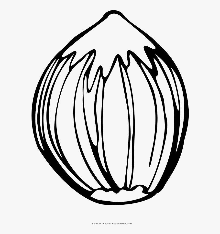 Nut Coloring Page - Nut Coloring Pages, Transparent Clipart