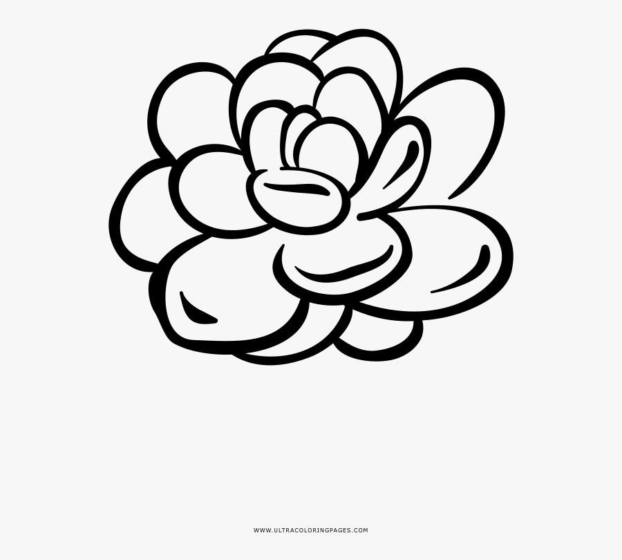 Succulent Houseplant Flower Coloring Page - Line Art, Transparent Clipart