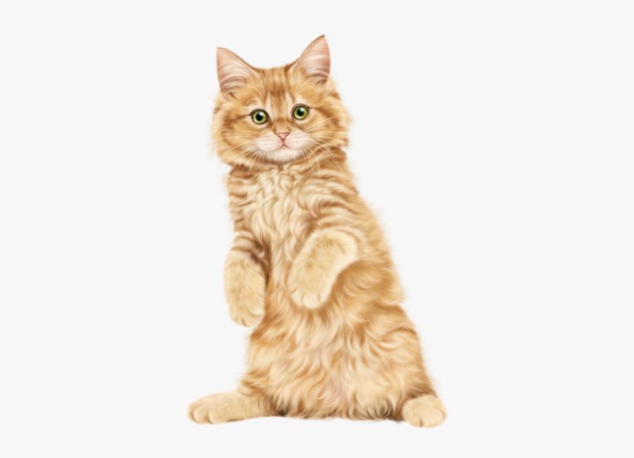 Picture Free Download Gato Katze Katter - Ragdoll Russian Blue Persian Cat, Transparent Clipart