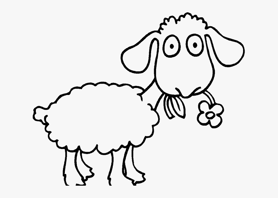 Transparent Baby Lamb Clipart Black And White - Sheep To Color Clipart, Transparent Clipart