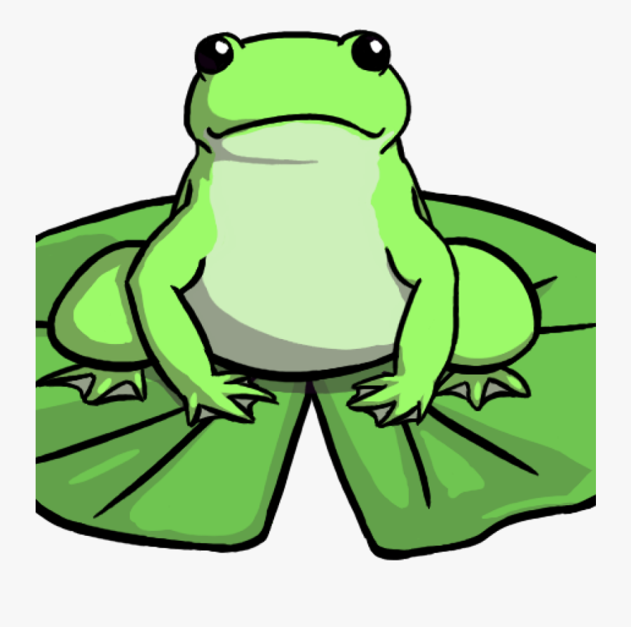 Transparent Frog School Clipart - Frog On A Lily Pad Drawing, Transparent Clipart