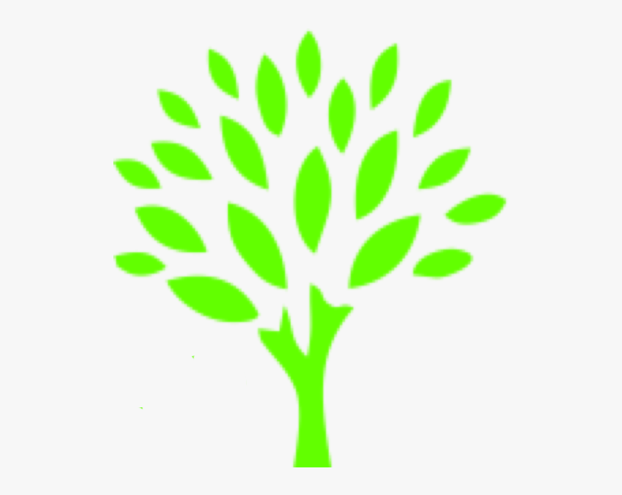 Transparent Top Of Tree Png - Go Green Auto Spa, Transparent Clipart