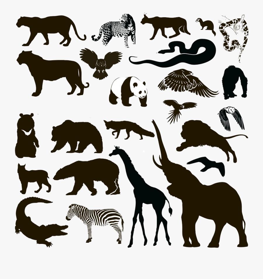 Silhouette Animal Wildlife - Wild Animal Silhouettes Free, Transparent Clipart