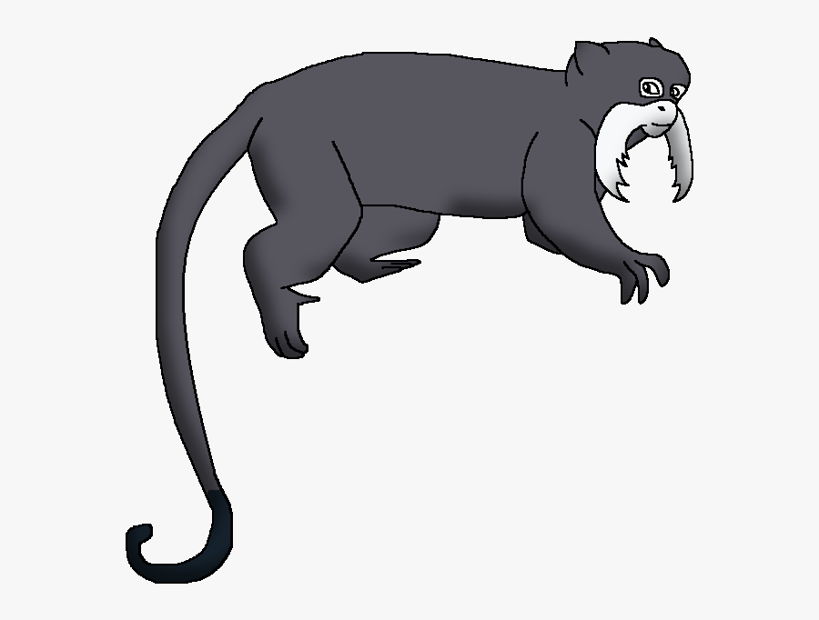 Wildlife Animal Pedia Wiki, Transparent Clipart