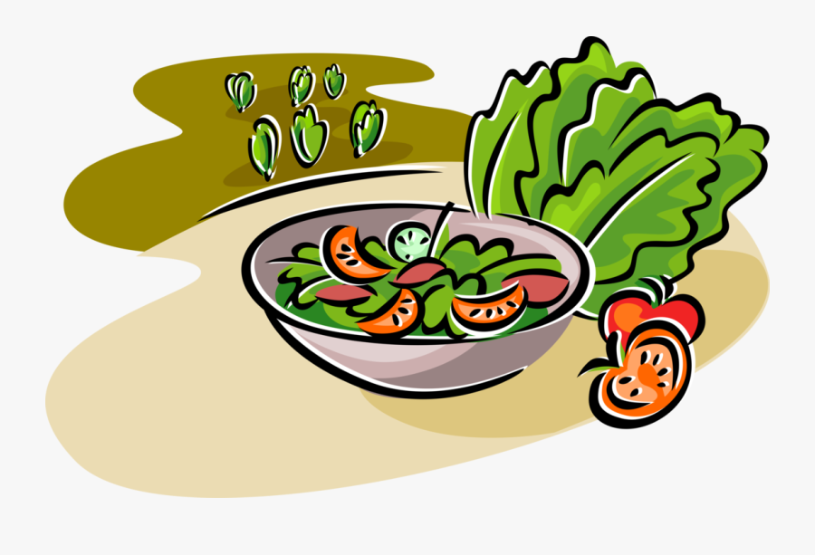 Vector Illustration Of Fresh Green Salad With Romaine - Salad Vector Png, Transparent Clipart
