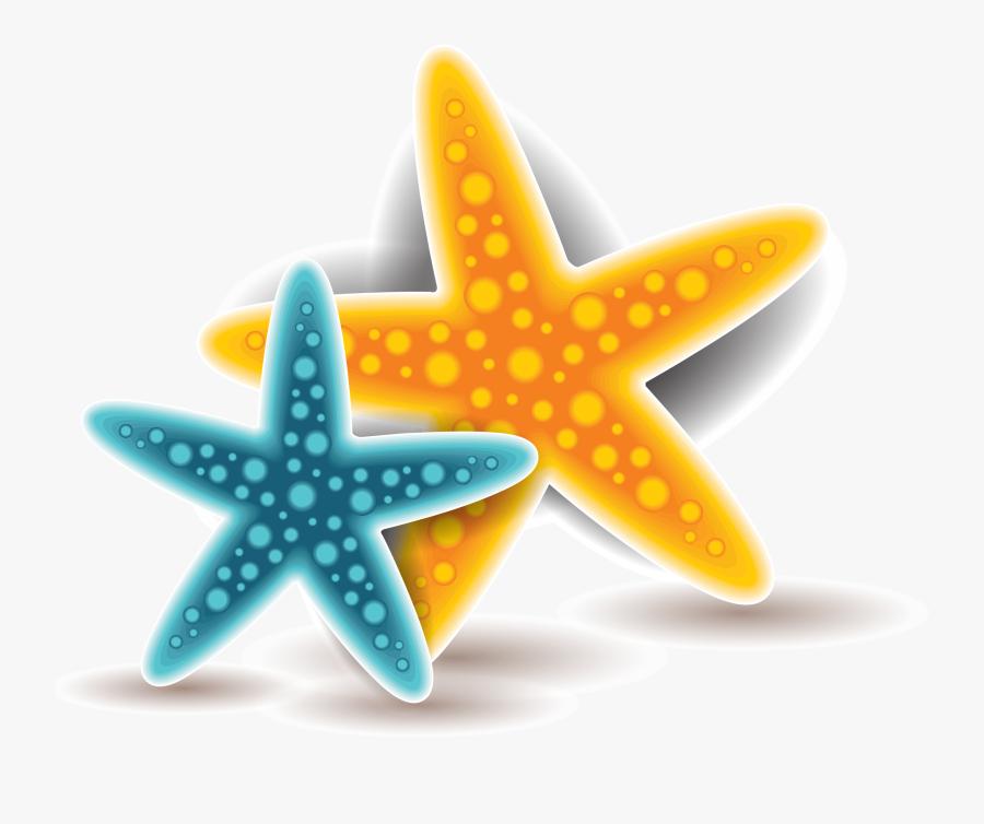 Starfish Euclidean Vector - Portable Network Graphics, Transparent Clipart