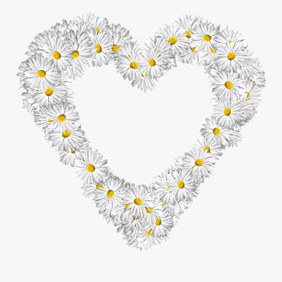 Heart, Flowers, Png, Love, Valentine, Daisies - Heart Of Flowers Png, Transparent Clipart