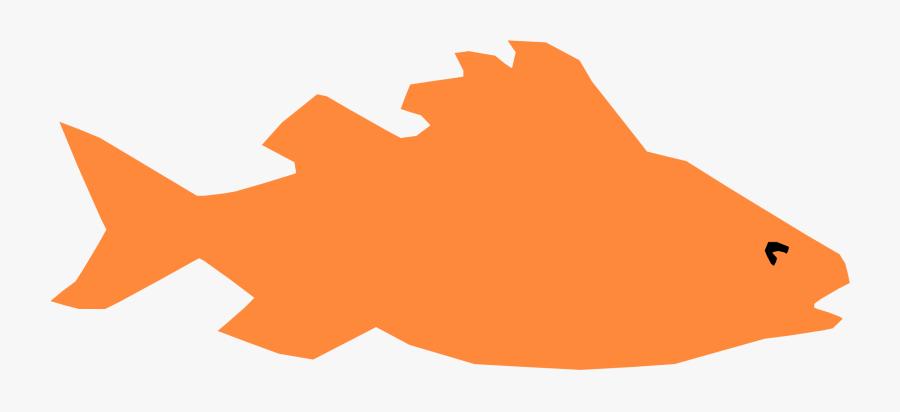 Fish,orange,organism - Fish, Transparent Clipart
