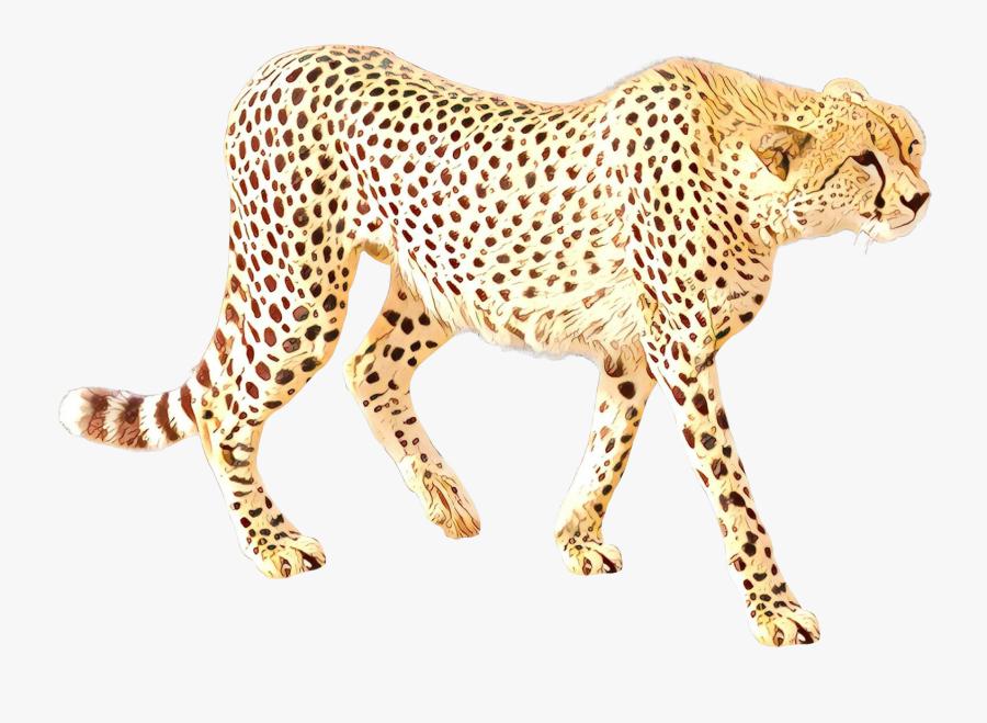 Cheetah Leopard Cat Jaguar Terrestrial Animal - Transparent Background Animal Transparent, Transparent Clipart