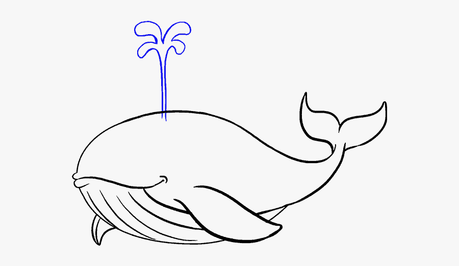 How To Draw A Whale In A Few Easy Steps Easy Drawing - Blue Whale Easy Drawing, Transparent Clipart