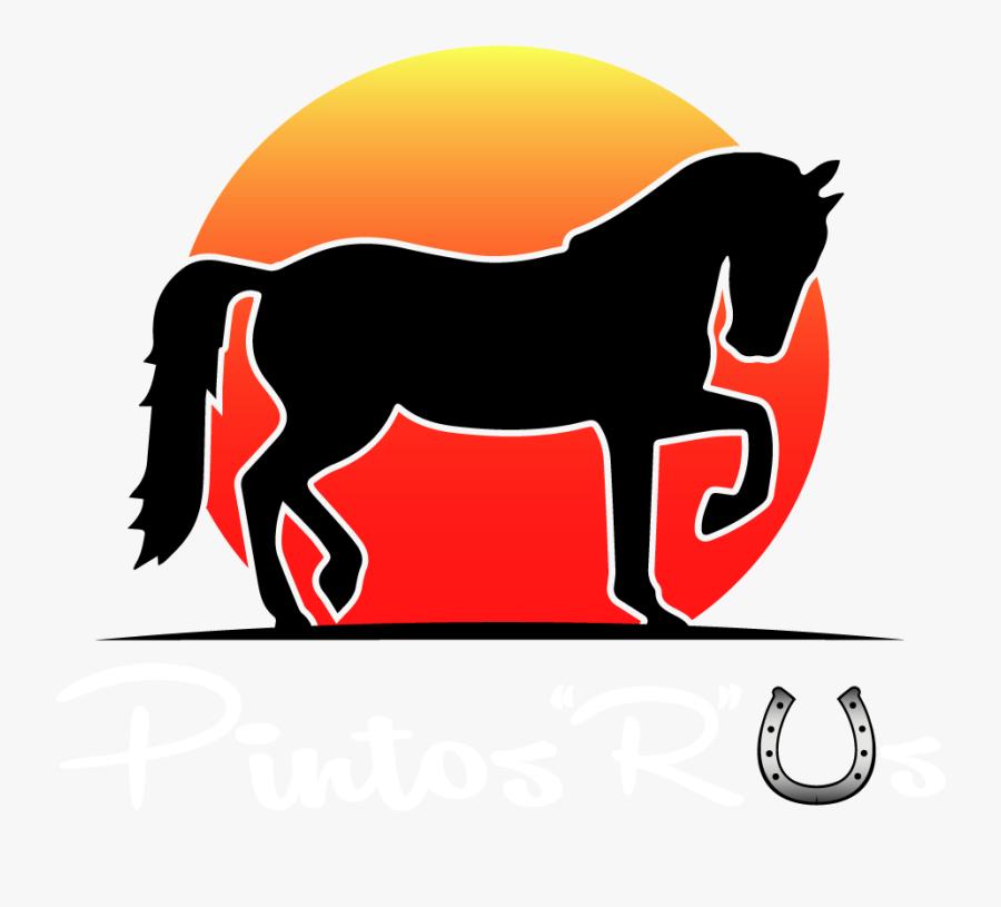 """Pinto""""s """"r - Mane, Transparent Clipart"""