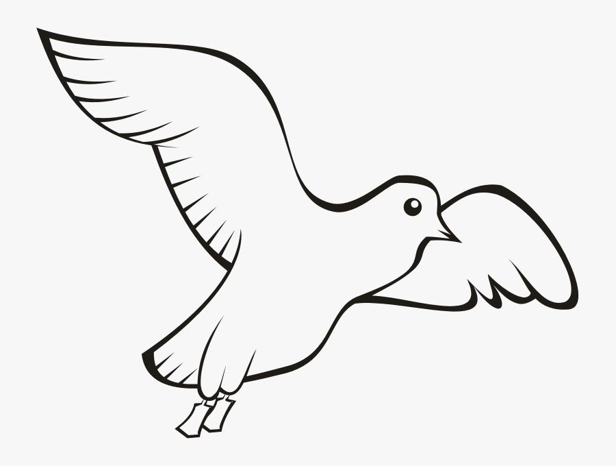 Bird Beak Domestic Pigeon Columbidae Clip Art - Homing Pigeon Outline, Transparent Clipart