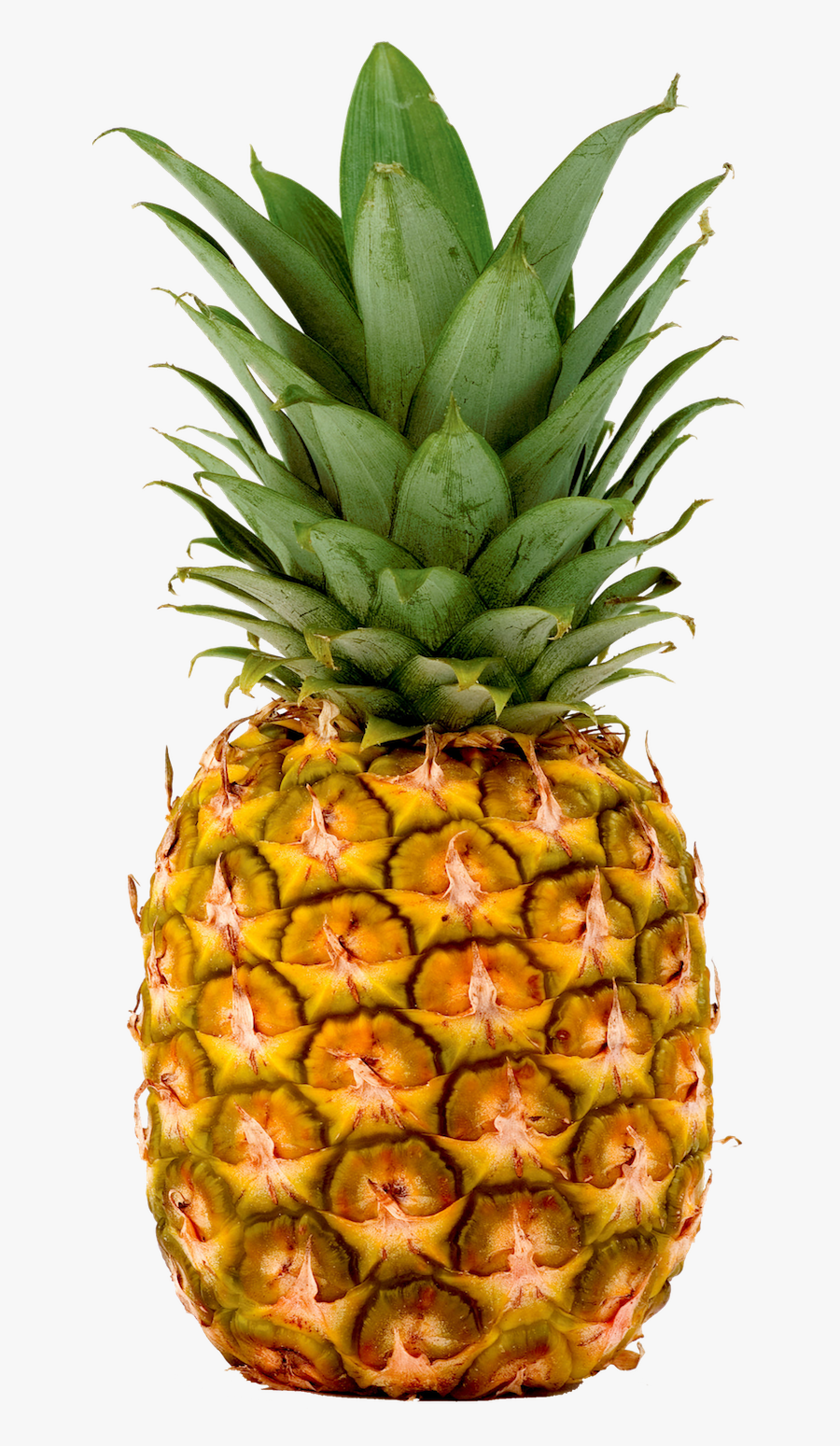 Pineapple, Pineapples Fresh Imports - Pineapple Png, Transparent Clipart
