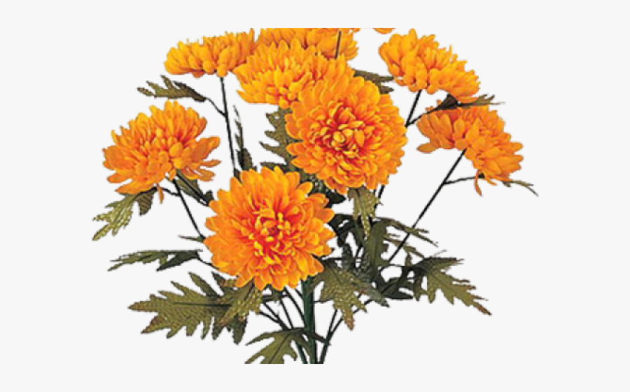 Bouquet Clipart Marigold - Chrysanthemum Indicum Groep, Transparent Clipart