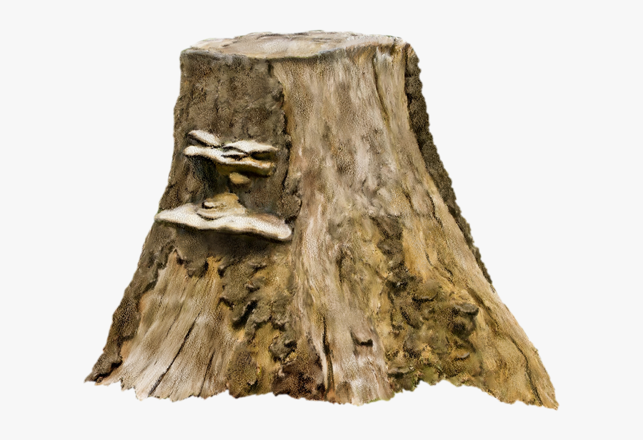 Tree Stump Photography Clip Art - Tree Stump Transparent, Transparent Clipart