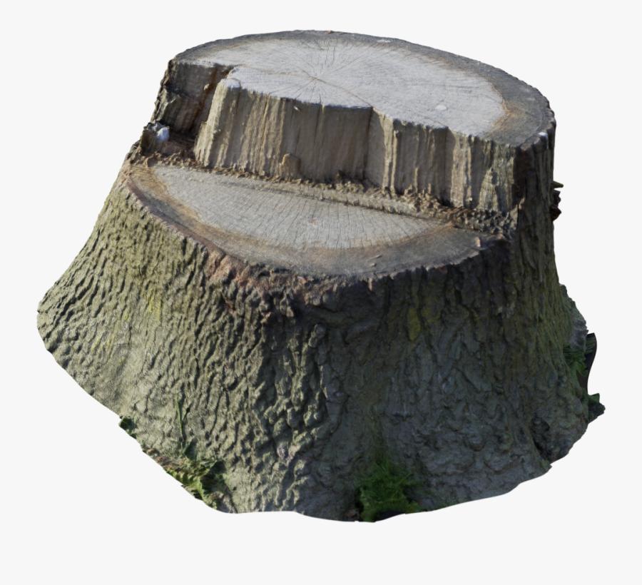 Scanned Tree Stump - Tree Stump Transparent, Transparent Clipart