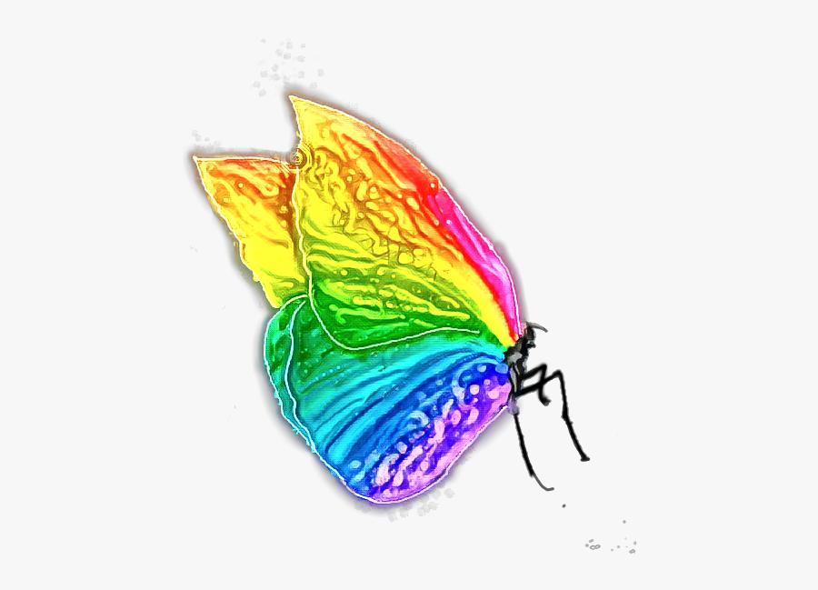 #mariposa #arcoiris #fullcolors #draw #magic #butterfly - Mariposa Y Arcoiris Png, Transparent Clipart