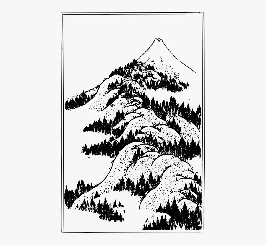 Pine Family,plant,flora - Mt Fuji Line Drawing, Transparent Clipart