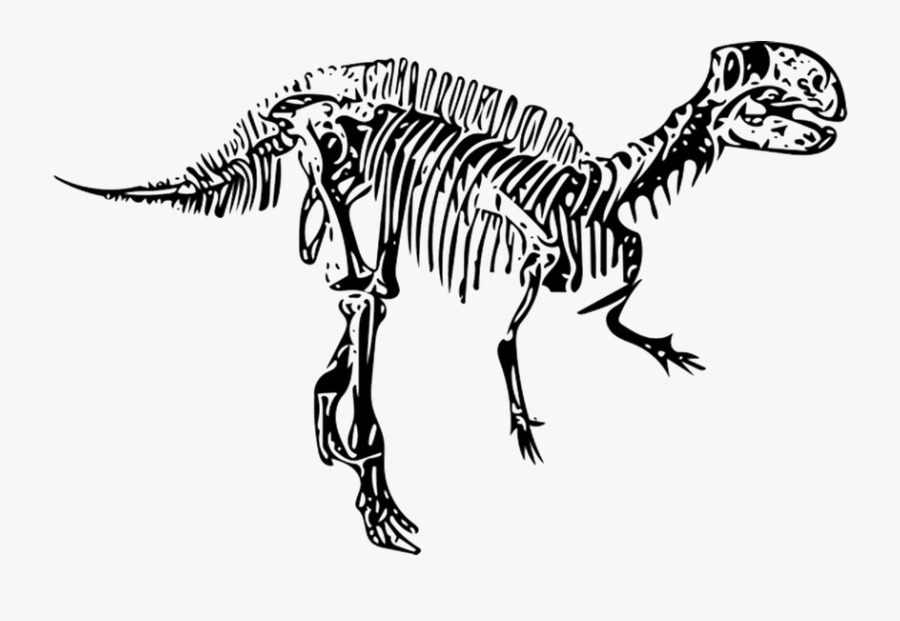 Transparent Fossil Clipart Black And White - Dinosaur Fossils Clipart Black And White, Transparent Clipart